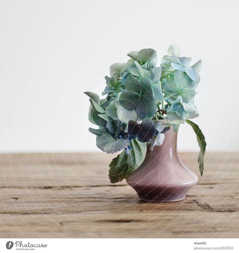 für Mutti blau schön Pflanze Blume Blatt Gefühle Frühling Blüte Stimmung rosa Dekoration & Verzierung Blühend Blumenstrauß Grünpflanze Holztisch Muttertag