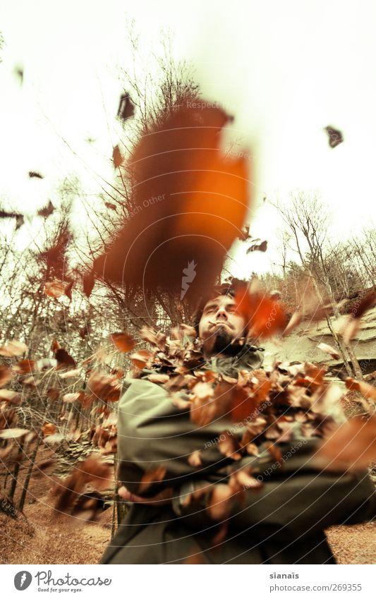 und noch viel mehr... Lifestyle Mensch maskulin Mann Erwachsene Natur Herbst Wetter Wind Blatt Wald Schutzbekleidung beobachten muskulös stark Macht Mut Hochmut