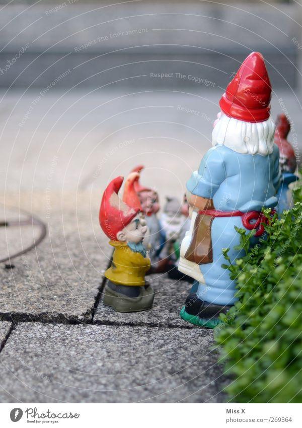 Gartendeko Kommunizieren geheimnisvoll Idylle Kitsch skurril Konflikt & Streit Dekoration & Verzierung Gartenzwerge Zwerg Versammlung Farbfoto mehrfarbig