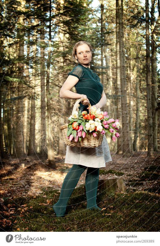 Flowers in the wood Mensch feminin Junge Frau Jugendliche Erwachsene 1 30-45 Jahre Umwelt Natur Landschaft Frühling Sommer Pflanze Baum Sträucher Moos Tulpe