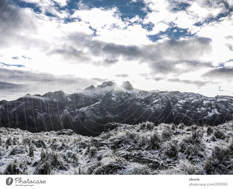 Trekking Day Morning Natur Ferien & Urlaub & Reisen Pflanze Landschaft Berge u. Gebirge Umwelt Felsen Wetter Sträucher Klima Gipfel Hügel Alpen Schneebedeckte Gipfel Moos Gletscher