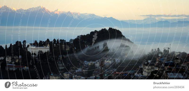 Darjeeling - It's not everthing about the tea. Himmel Natur blau weiß Pflanze Wolken schwarz ruhig gelb Landschaft Berge u. Gebirge Freiheit Luft Stimmung