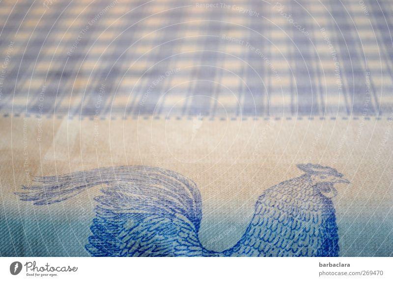 Hahn sucht Henne Häusliches Leben einrichten Tisch Wohnzimmer Tier Dekoration & Verzierung Tischwäsche Streifen kariert Freundlichkeit hell schön blau weiß