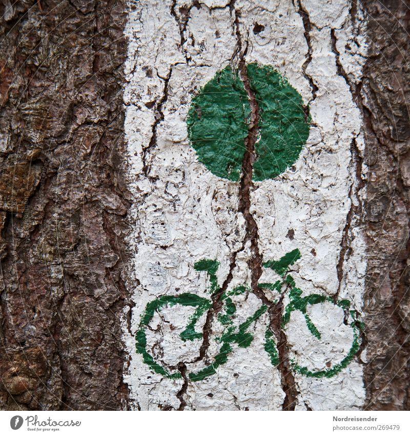 Freigabe weiß grün Baum Wege & Pfade braun Schilder & Markierungen Grafik u. Illustration Zeichen Verkehrswege Mobilität Fahrradfahren Riss graphisch Baumrinde