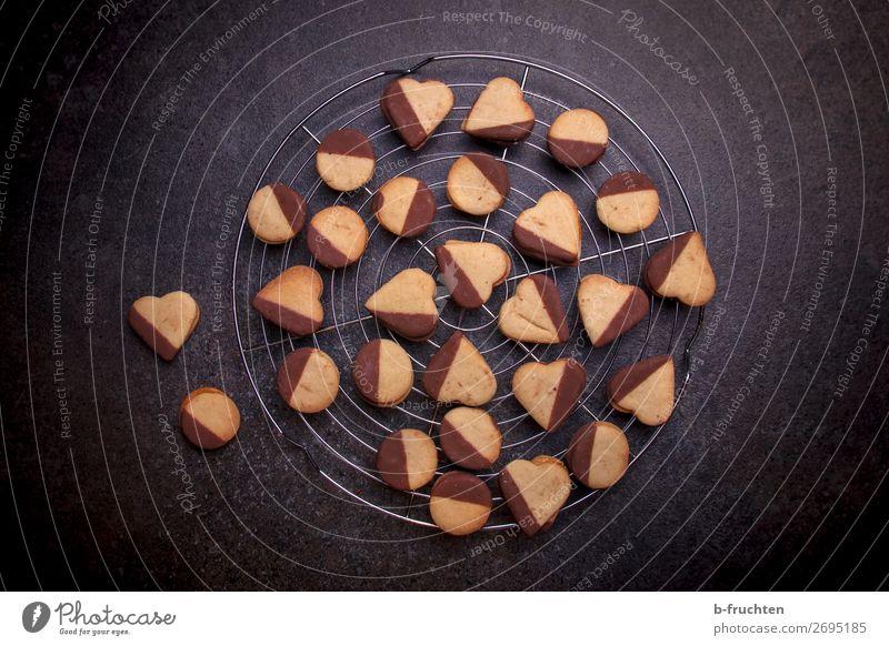 Kekse mit Schokolade auf Kuchengitter Teigwaren Backwaren Dessert Gesunde Ernährung Winter Feste & Feiern Weihnachten & Advent Küche wählen dunkel frisch Snack