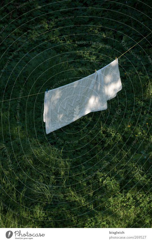 Waschtag Wäsche Wäscheleine Bettwäsche Gras Wiese Sauberkeit grün weiß Farbfoto Außenaufnahme Menschenleer Textfreiraum oben Textfreiraum unten