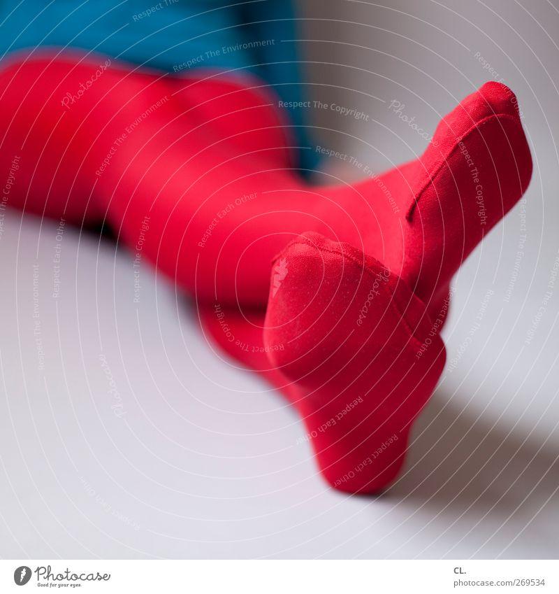rotblau Mensch Frau Jugendliche blau schön rot Erwachsene Erholung feminin Erotik Junge Frau Stil Beine Mode Fuß 18-30 Jahre