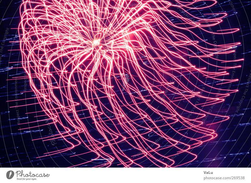 Jellyfish Nachthimmel Frühling rosa rot Freude Euphorie Feuerwerk Silvester u. Neujahr Belichtung Farbfoto Außenaufnahme Experiment abstrakt Menschenleer
