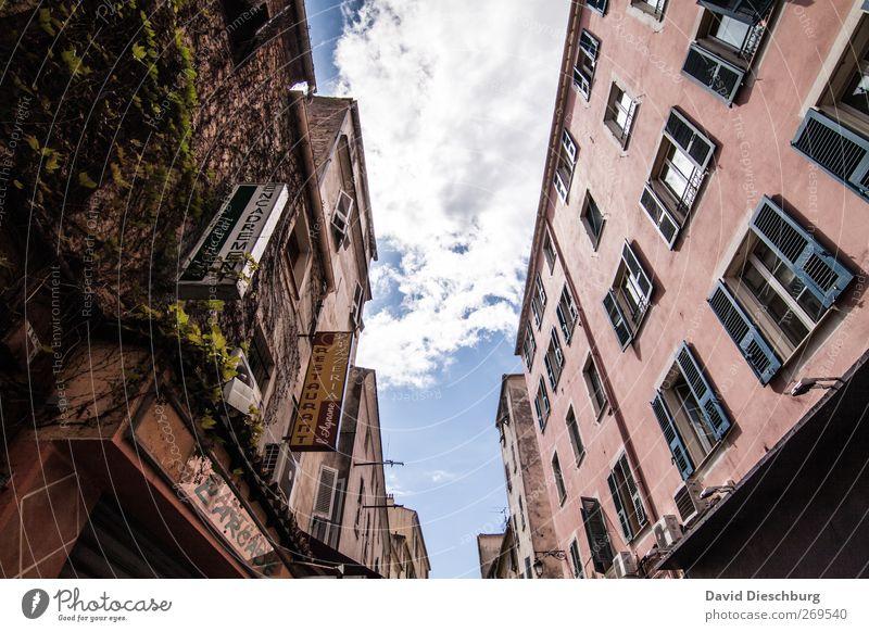 Ajaccio/Einkaufsmeile Ferien & Urlaub & Reisen Städtereise Stadt Stadtzentrum Altstadt Haus Fassade Fenster rosa weiß Italien alt Fensterladen Gasse bewachsen