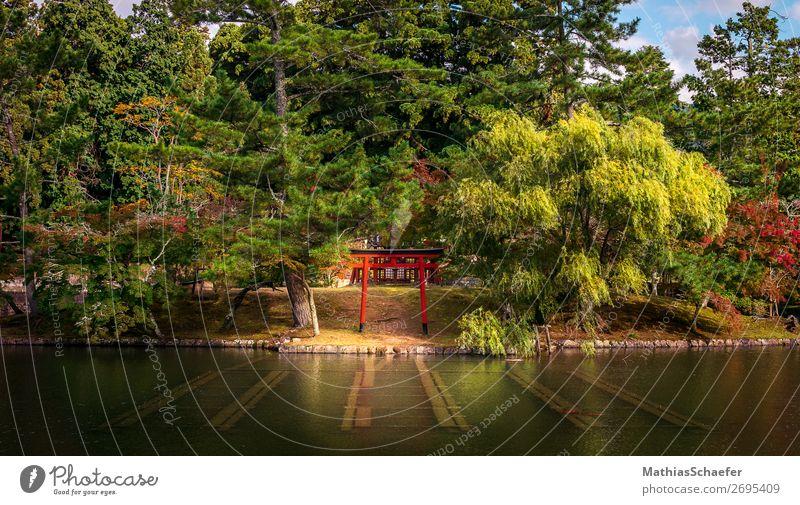 Torii Ferien & Urlaub & Reisen Natur Wasser Landschaft Baum ruhig Herbst Gras Garten Park Sträucher Schönes Wetter Seeufer Glaube Gelassenheit Moos
