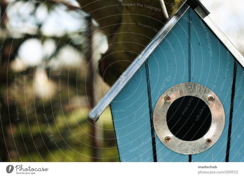 Singlehaushalt aus der Vogelperspektive Lifestyle Freizeit & Hobby Natur Sommer Haus Einfamilienhaus Futterhäuschen bauen gebrauchen Häusliches Leben kuschlig