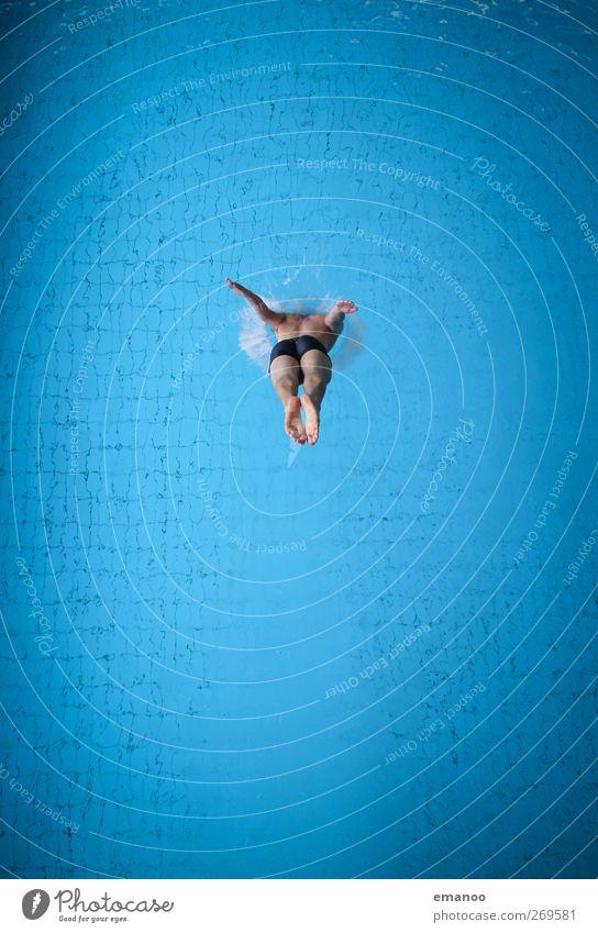 head first Mensch Mann blau Wasser Freude Erwachsene kalt Sport springen Stil Körper Schwimmen & Baden Kraft Angst maskulin hoch