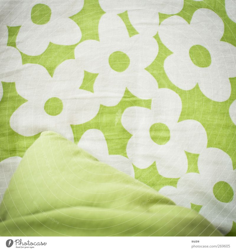 Blütenweiß grün schön Blume Hintergrundbild Design frisch Fröhlichkeit Dekoration & Verzierung Stoff Falte graphisch Textilien Kissen
