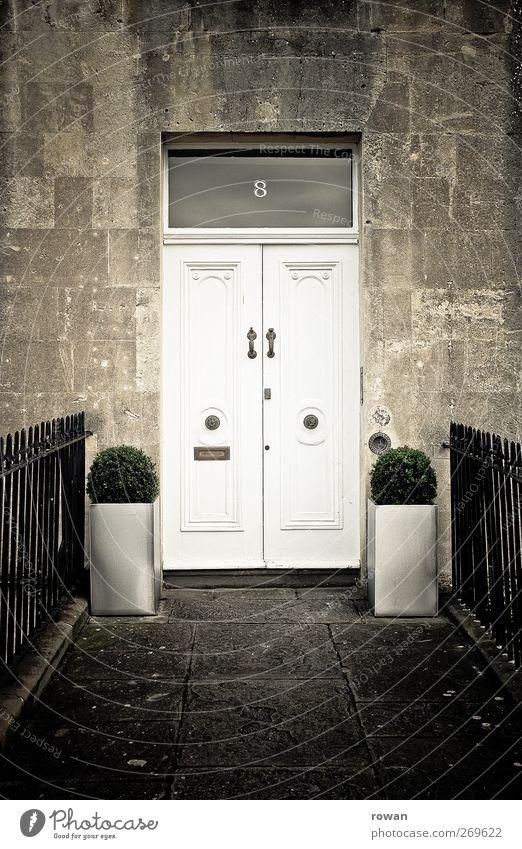 No.8 Haus Bauwerk Gebäude Architektur Mauer Wand Fassade Tür Namensschild Klingel Briefkasten alt Eingang Blumenkasten Sträucher Dekoration & Verzierung England