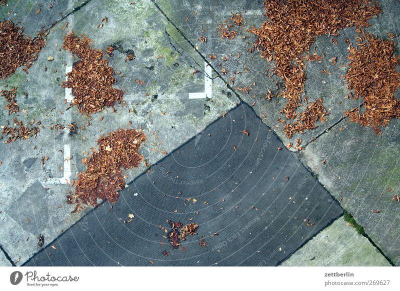 Wirrer Herbst Stadt alt Blatt Linie Verkehr Platz Asphalt gut Verkehrswege Herbstlaub Marktplatz Parkplatz Herbstfärbung Raster Fahrbahnmarkierung