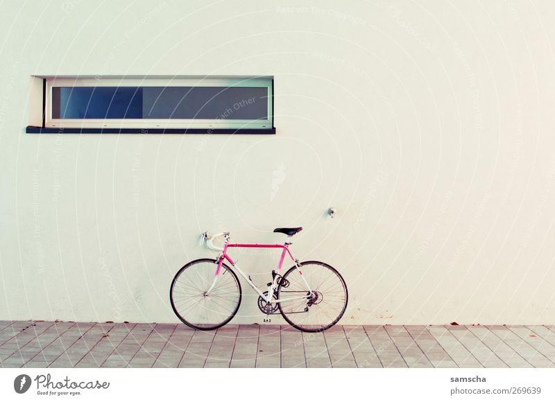 Let's ride Fenster Sport Wand Mauer Fahrrad rosa Fassade stehen Rennsport sportlich Mobilität parken Rennrad Vor hellem Hintergrund