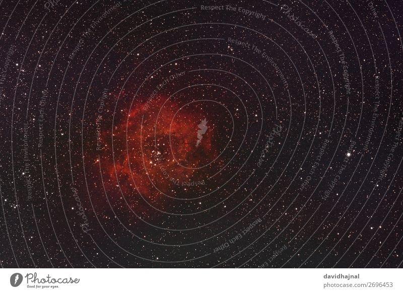 Rosettennebel Technik & Technologie Wissenschaften Fortschritt Zukunft Umwelt Natur Himmel nur Himmel Wolkenloser Himmel Nachthimmel Stern Winter Wachenheim