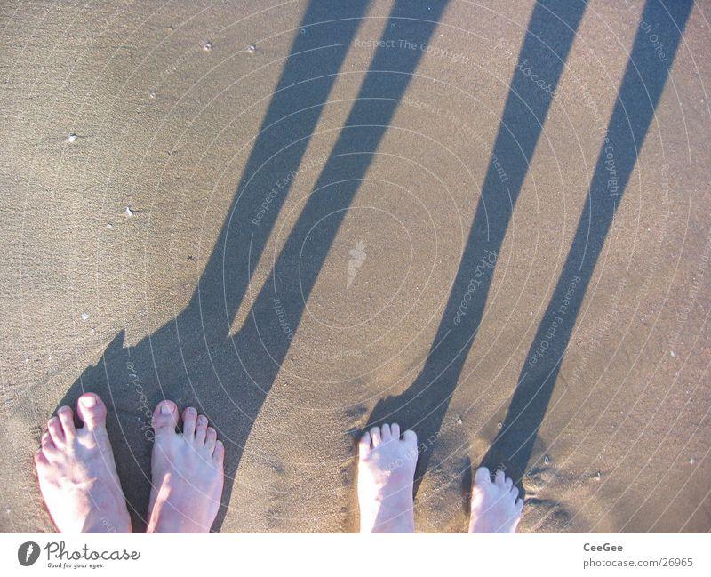 Bein-Nah Strand Meer Zehen nass feucht dreckig Wasser Sand Fuß Schatten Beine Barfuß