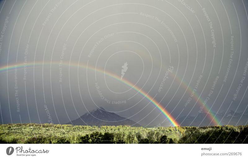 unbelievable Himmel Natur Wald Umwelt Landschaft Wind außergewöhnlich Physik Unwetter Sturm Gewitter Regenbogen Klimawandel Naturgewalt Naturphänomene