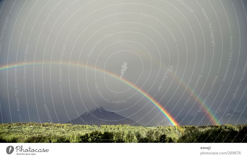 unbelievable Umwelt Natur Landschaft Himmel Klimawandel Unwetter Wind Sturm Gewitter Wald außergewöhnlich Regenbogen Naturgewalt Naturphänomene Naturerlebnis