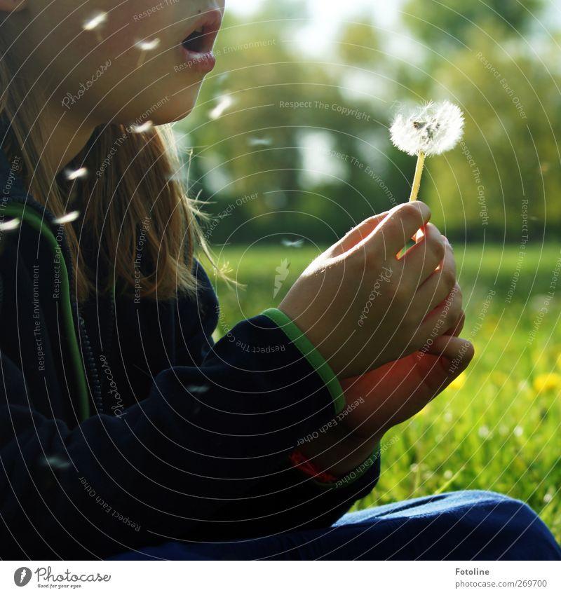 Fliegt ihr kleinen Schirmchen, fliegt! Mensch feminin Kind Mädchen Kindheit Körper Haut Kopf Haare & Frisuren Gesicht Mund Lippen Arme Hand Finger Umwelt Natur