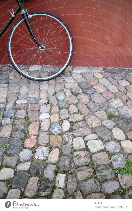 Vorderrad Fahrrad Platz Mauer Wand Verkehrsmittel Stein stehen rund grau rot Kopfsteinpflaster Rad Speichen Fußweg Reifen Vorderseite Pflastersteine Pflasterweg