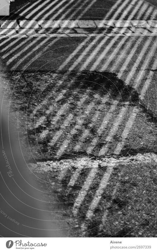 Schrägstriche Müll Hof Straßenbelag Tor Einfahrt Schatten Zeichen Linie Streifen alt kaputt trist Stadt grau weiß Verfall Neigung Zebrastreifen gestreift
