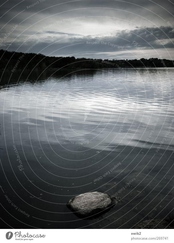Wassermusik Freiheit Umwelt Natur Landschaft Urelemente Himmel Wolken Wald Küste Seeufer Stein Granit Lausitz Deutschland Osten dunkel natürlich blau grau