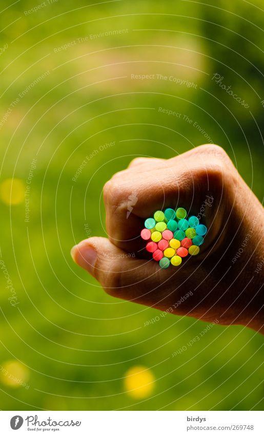 Bunte Plastik-Trinkhalme Hand Faust Kunst Kunststoff leuchten ästhetisch außergewöhnlich fantastisch positiv rund Farbe nachhaltig Politik & Staat Sinnesorgane