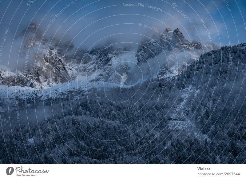 Chamonix II Schnee Schneefall Berge u. Gebirge Wolken Alpen Gipfel Schneebedeckte Gipfel kalt Frankreich Bergkamm Bergkette Arve Farbfoto Silhouette blau Wald