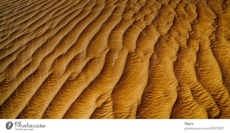 im Oman die alte Wüste und das leere Viertel Design Sommer Strand Meer Umwelt Natur Erde Sand Klima Wetter Dürre Küste heiß braun gelb grau schwarz weiß Tod
