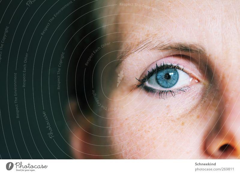 Die schönere Seite Mensch Frau Jugendliche blau weiß Erwachsene Gesicht Auge feminin Leben Haare & Frisuren Kopf Nase 18-30 Jahre beobachten Ohr
