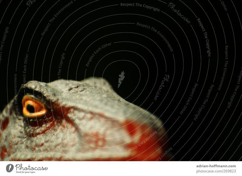 Soon… Spielzeug Kitsch Krimskrams Souvenir Sammlerstück Kunststoff grau rot Dinosaurier T-Rex Tyrannosaurus Figur Farbfoto Textfreiraum oben Unschärfe