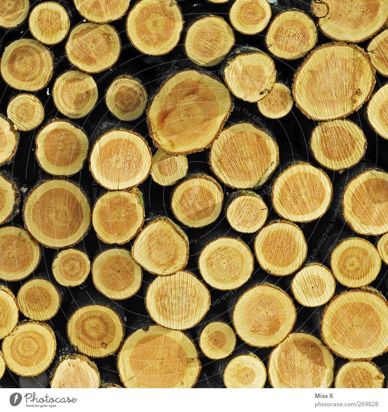 Holzig (leider ohne Herz) Baum rund braun viele Baumstamm Abholzung Ast Zweige u. Äste Jahresringe Farbfoto Muster Menschenleer