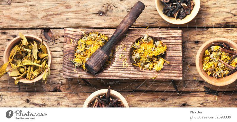 getrocknete Heilpflanzen Kraut Medizin Pflanze Kräuterbuch Stössel medizinisch Gesundheit Blume Heilung Behandlung Bestandteil Aromatherapie hölzern Homöopathie