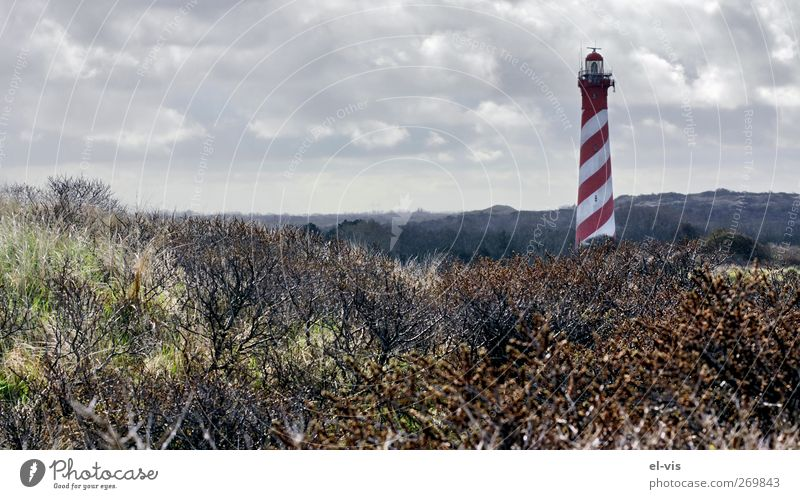 Leuchtturm auf Schouwen-Duivland, Zeeland, Holland Strand Landschaft Himmel Wolken Gewitterwolken Frühling Wetter schlechtes Wetter Sträucher Hügel Nordsee
