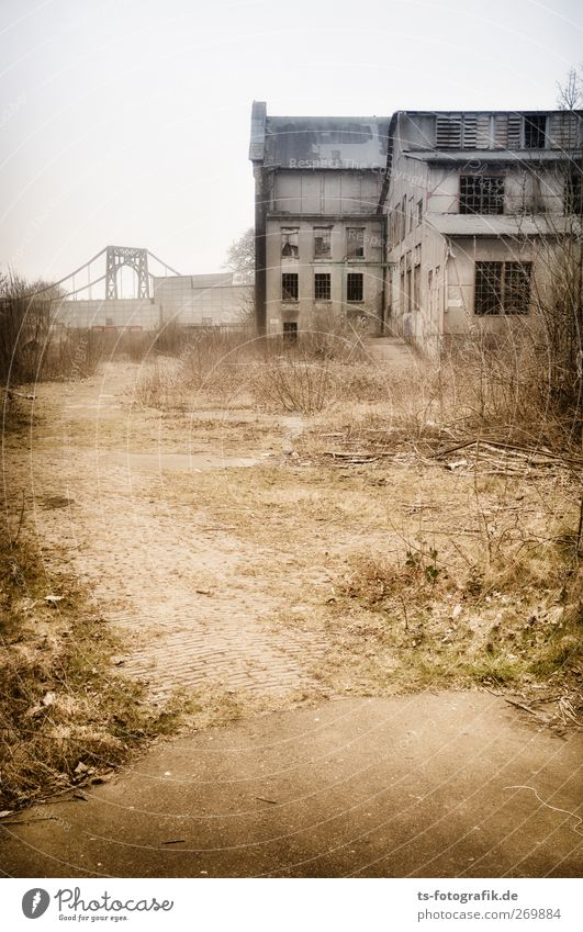 No Sleep till Brooklyn II Stadt Landschaft dunkel Wand Architektur Wege & Pfade grau Sand Mauer Gebäude braun Zeit Fassade Brücke kaputt Sträucher