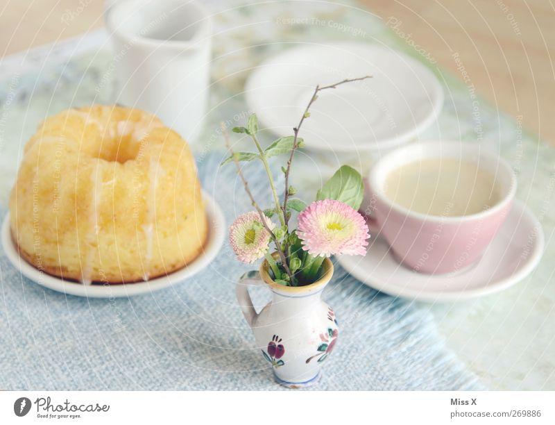 Muttertag Lebensmittel Teigwaren Backwaren Kuchen Ernährung Frühstück Kaffeetrinken Getränk Heißgetränk Geschirr Teller Tasse Blume lecker süß Blumenvase