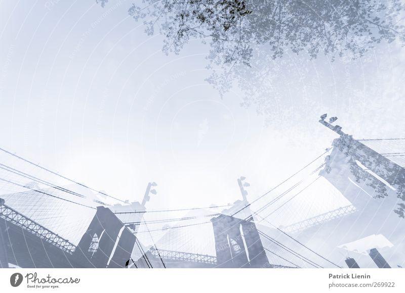 Models On Cocaine Stadt Brücke Bauwerk Gebäude Architektur Sehenswürdigkeit Leben ästhetisch Bewegung Partnerschaft bizarr entdecken Gesellschaft (Soziologie)