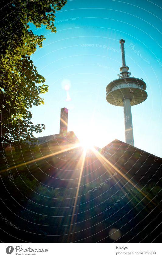 die letzten Sonnenstrahlen Wolkenloser Himmel Sonnenlicht Sommer Schönes Wetter Baum Haus Fernsehturm leuchten ästhetisch hell hoch blau grün Stadt Funkturm