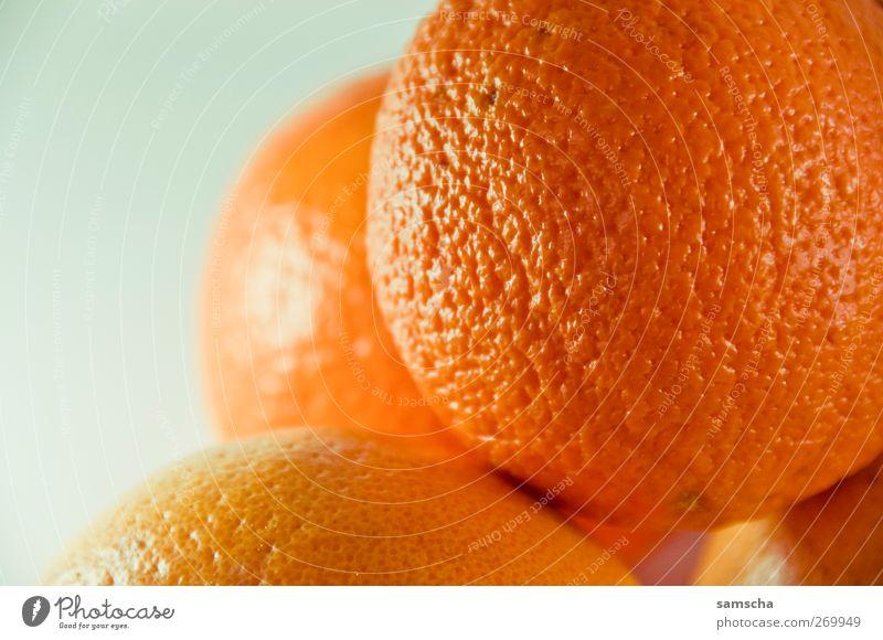 Vitamin C kalt Leben Bewegung Gesundheit orange Zufriedenheit Frucht Ernährung Orange natürlich Lebensmittel Energie frisch süß gut Gesunde Ernährung