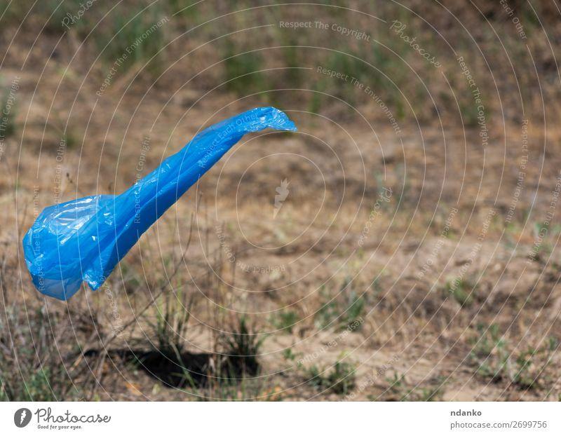blauer Polyethylenbeutel für Müllfliege Sommer Umwelt Natur Landschaft Pflanze Erde Baum Gras Park Wald Kunststoff frisch natürlich grün Farbe