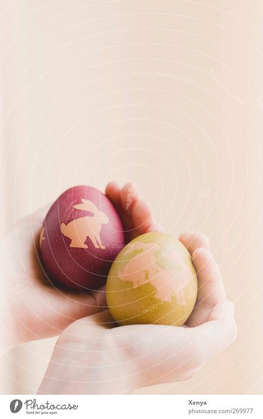 Nächster bitte! Hand grün rot Lebensmittel lustig Ostern Hase & Kaninchen Ei Humor Osterei haltend