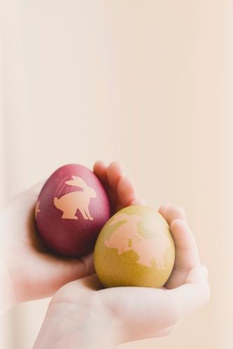 Nächster bitte! Lebensmittel Osterei Ei lustig grün rot Hand haltend Ostern Hase & Kaninchen Humor Innenaufnahme Menschenleer Textfreiraum oben