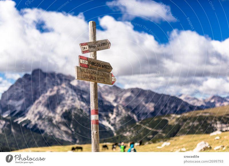 # 796 Drei Zinnen Dolomiten Sextener Dolomiten Weltkulturerbe Hochebene Farbfoto wandern Fußweg Gipfel Bergsteigen Alpen Berge u. Gebirge Schönes Wetter Wiese