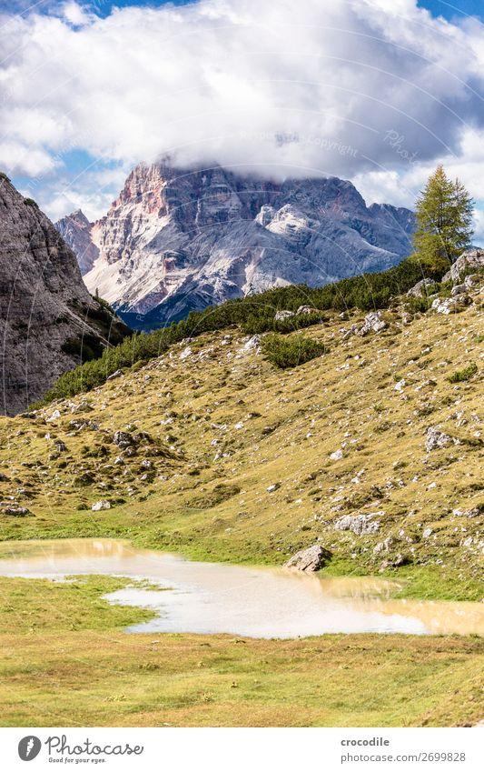 # 825 Drei Zinnen Dolomiten Sextener Dolomiten Weltkulturerbe Hochebene Farbfoto wandern Fußweg Gipfel Bergsteigen Alpen Berge u. Gebirge Schönes Wetter Wiese
