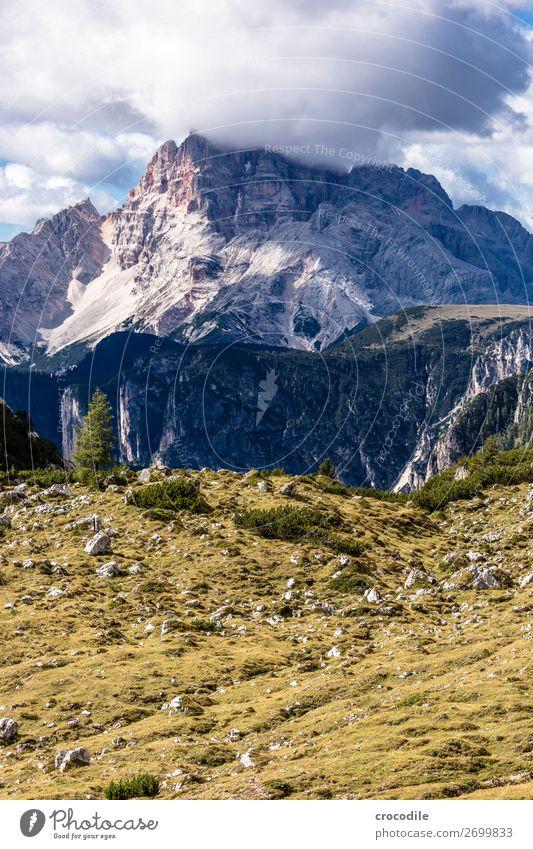 # 820 Drei Zinnen Dolomiten Sextener Dolomiten Weltkulturerbe Hochebene Farbfoto wandern Fußweg Gipfel Bergsteigen Alpen Berge u. Gebirge Schönes Wetter Wiese