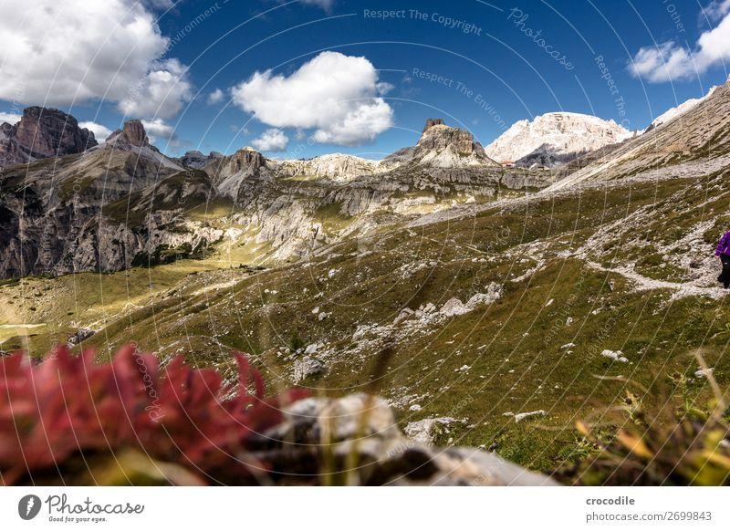 # 816 Drei Zinnen Dolomiten Sextener Dolomiten Weltkulturerbe Hochebene Farbfoto wandern Fußweg Gipfel Bergsteigen Alpen Berge u. Gebirge Schönes Wetter Wiese