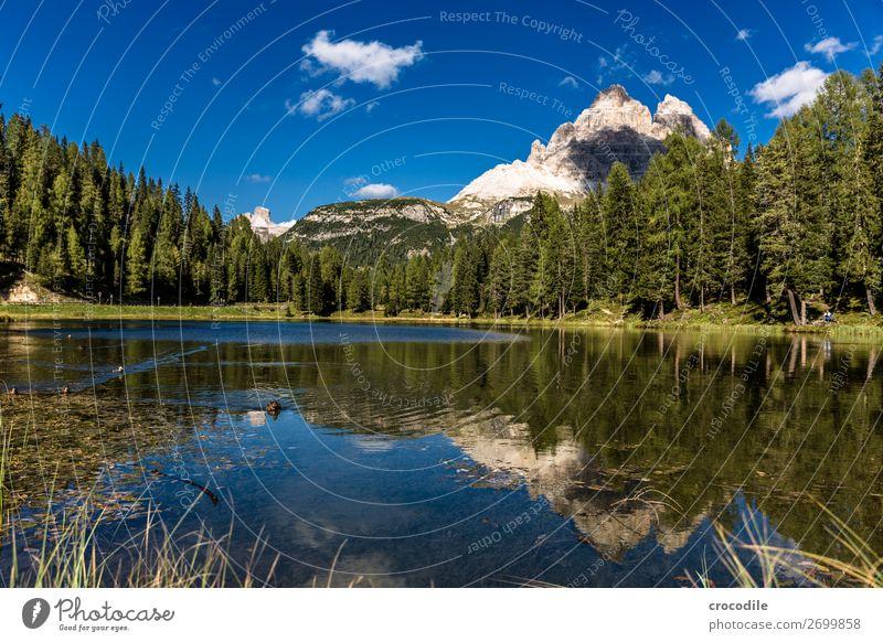 789 Drei Zinnen Dolomiten Sextener Dolomiten Weltkulturerbe Hochebene Farbfoto wandern Fußweg Gipfel Bergsteigen Alpen Berge u. Gebirge Schönes Wetter Wiese