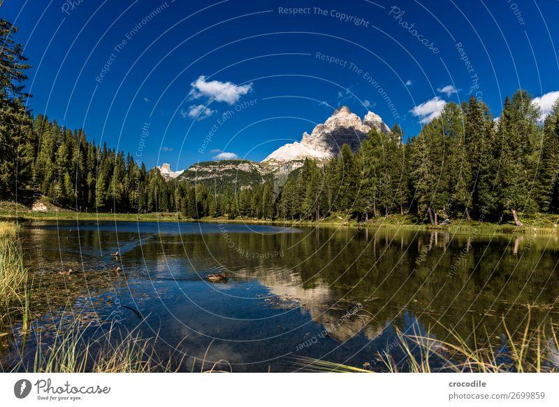 # 788 Drei Zinnen Dolomiten Sextener Dolomiten Weltkulturerbe Hochebene Farbfoto wandern Fußweg Gipfel Bergsteigen Alpen Berge u. Gebirge Schönes Wetter Wiese